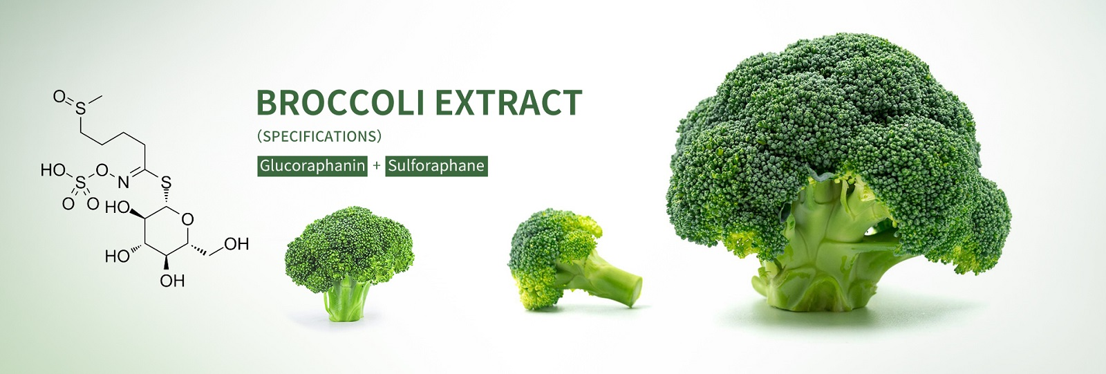 broccoli extract glucoraphanin Sulforaphane